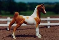 Stablemates_American_Saddlebred
