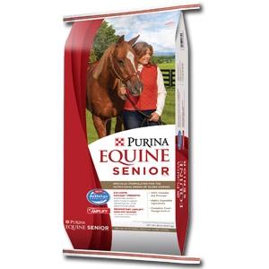 web_equine-senior-2014