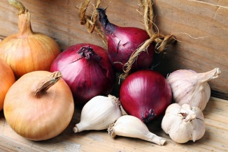 Onion-and-garlic-varieties